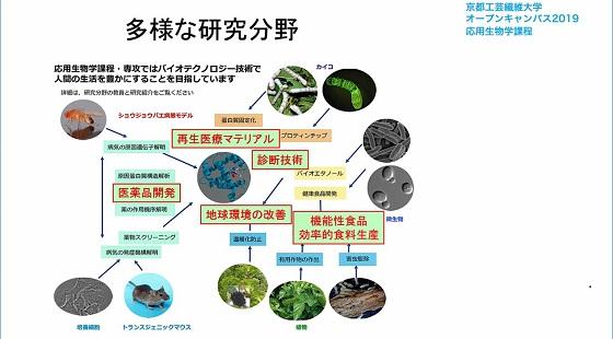 応用生物学課程